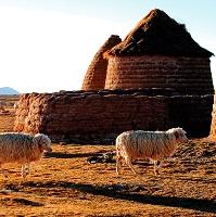 Albergue Comunitario Uru Chipaya / Chipaya, Bolivia