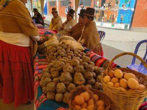 Rutas Turísticas Gastronómicas Agroalimentarias para fortalecer economía comunitaria campesina