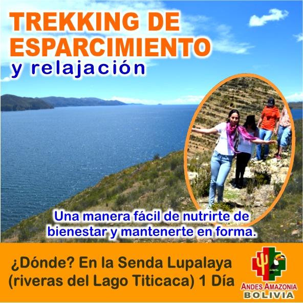 Lee más sobre el artículo Origins Bolivia Explorer: Tour SENDA LUPALAYA – Trekking de Esparcimiento y Relajación